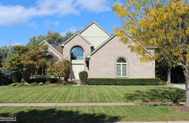 1040 Adele Ct, Rochester Hills, MI 48309 (#58031397469) :: Alan Brown Group