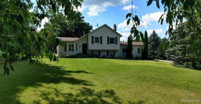 5023 Laur Road, Deerfield Twp, MI 48461 (MLS #219105935) :: The Toth Team