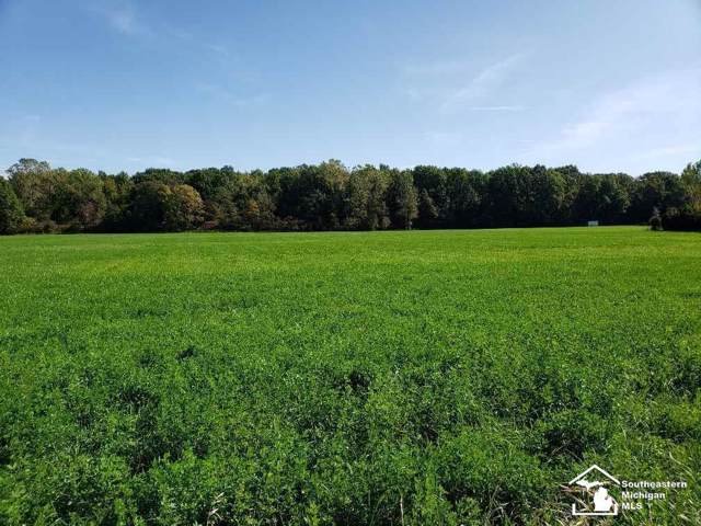 0 N County Line Rd, Summerfield Twp, MI 49238 (#57031397845) :: The BK Agency