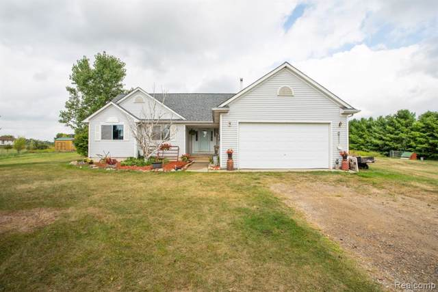6533 Lyons Road, Goodland Twp, MI 48444 (#219106876) :: Alan Brown Group