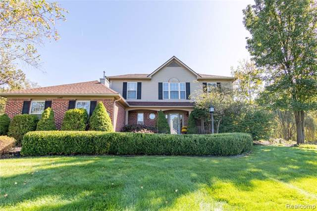 11447 Appaloosa Trail, Putnam Twp, MI 48169 (#219106982) :: The Mulvihill Group