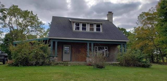 1411 N Adams Rd, FAYETTE TWP, MI 49250 (#62019051020) :: The Alex Nugent Team | Real Estate One