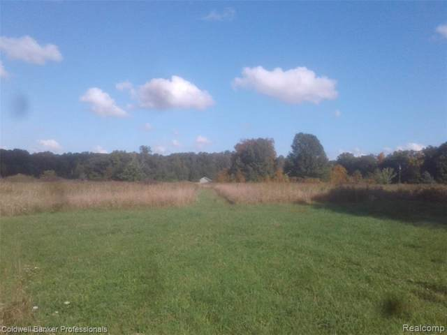 VL Green Road, Deerfield Twp, MI 48430 (#219107403) :: The Mulvihill Group