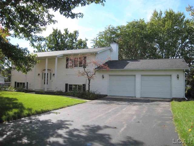 8666 Hawthorne Blvd., Tecumseh Twp, MI 49286 (#56031398145) :: The Mulvihill Group