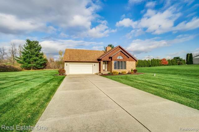 1618 Rulane Drive, Mayfield Twp, MI 48446 (#219108605) :: The Buckley Jolley Real Estate Team