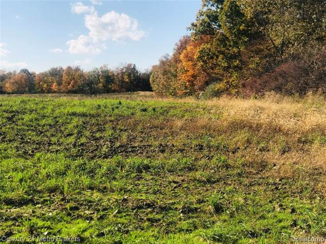 Parcel D Hadley Road, Hadley Twp, MI 48438 (#219108721) :: The Buckley Jolley Real Estate Team