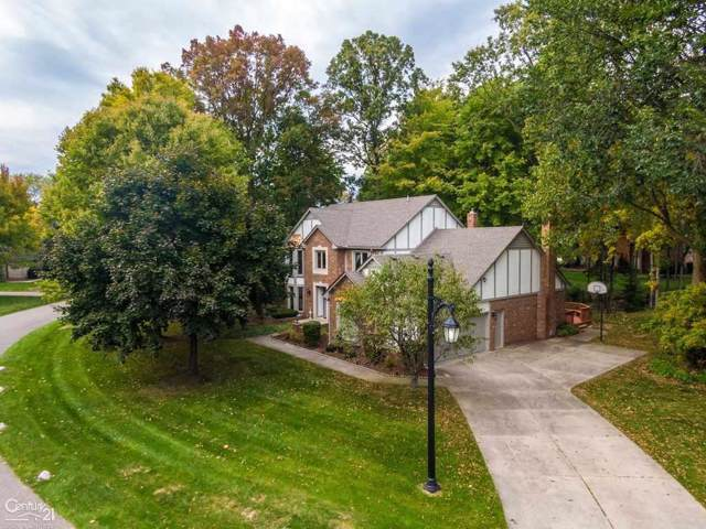 13993 Timberview, Shelby Twp, MI 48315 (#58031398436) :: The Mulvihill Group