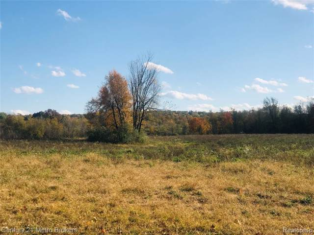 Parcel E Brocker Road, Hadley Twp, MI 48438 (MLS #219108936) :: The John Wentworth Group