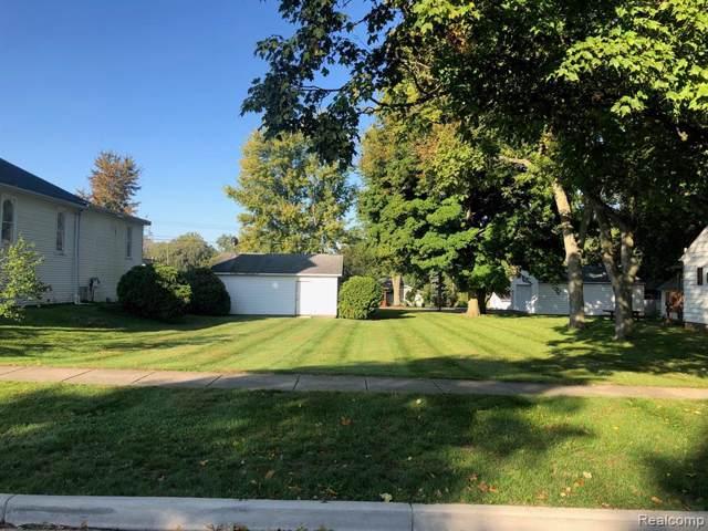 V/L N Summit Street, Webberville Vlg, MI 48892 (#219111111) :: The Buckley Jolley Real Estate Team