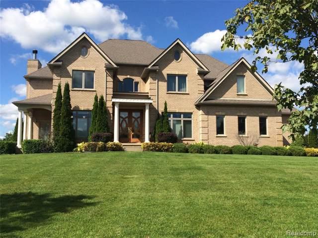 22239 Roberts Drive, Novi, MI 48167 (#219112125) :: The Buckley Jolley Real Estate Team
