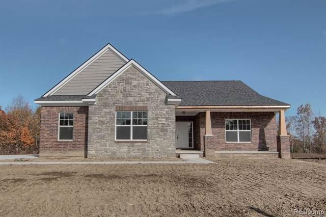 59382 Deer Haven Drive, Lyon Twp, MI 48178 (#219113389) :: The Buckley Jolley Real Estate Team