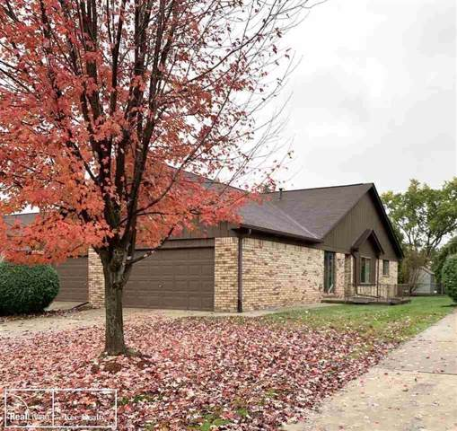 20480 Palm Meadow, Clinton Twp, MI 48036 (#58031399987) :: The Mulvihill Group