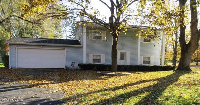 271 N Fiske Rd, Coldwater Twp, MI 49036 (#62019054328) :: The Mulvihill Group