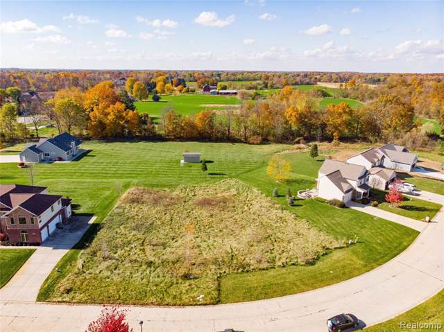 13494 Patrick Drive, Fenton Twp, MI 48451 (#219115044) :: The Buckley Jolley Real Estate Team