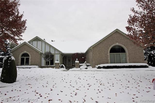 6674 Aurora Drive, Troy, MI 48098 (MLS #219115533) :: The Toth Team