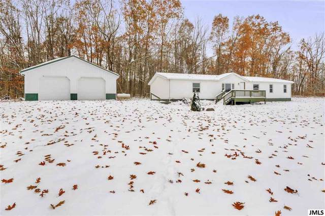 11550 Goffe Rd, Hanover, MI 49241 (MLS #55201904201) :: The Toth Team