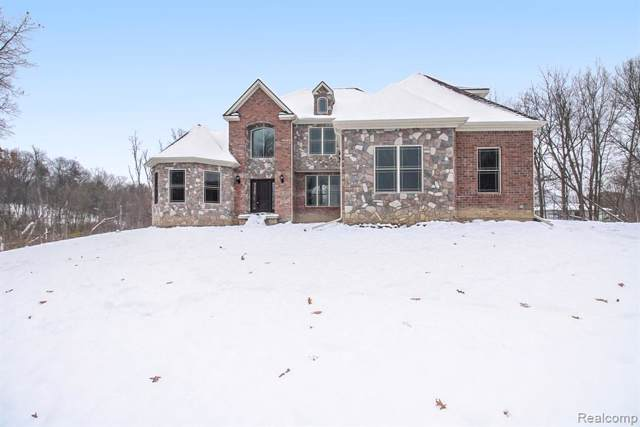 11015 Lavender Court, Tyrone Twp, MI 48430 (#219116480) :: The Buckley Jolley Real Estate Team