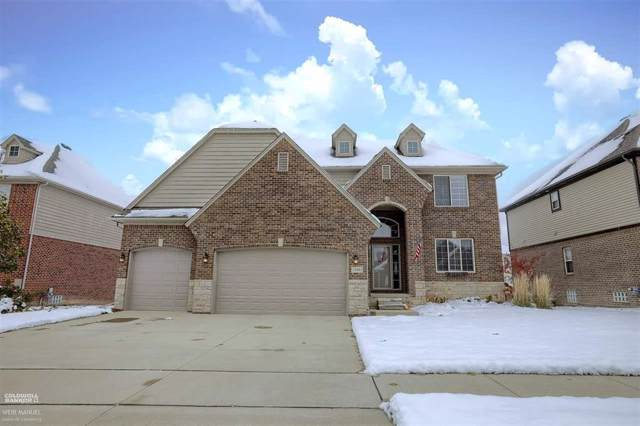 21943 Pinder Ct., Macomb Twp, MI 48044 (#58050000446) :: Team Sanford