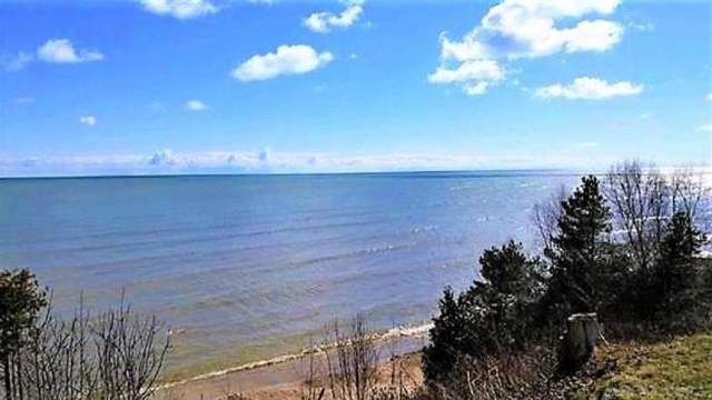 N Lake St., Forestville, MI 48434 (#58050000507) :: Duneske Real Estate Advisors