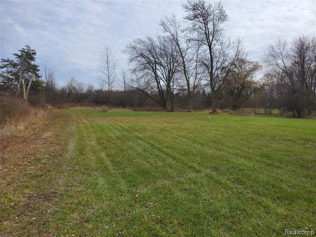 3199 S Elms Road, Flint Twp, MI 48473 (#219118018) :: The Buckley Jolley Real Estate Team