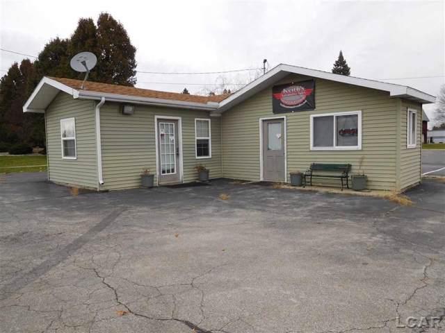 1203 Wolf Creek, Adrian, MI 49221 (#56050000756) :: GK Real Estate Team