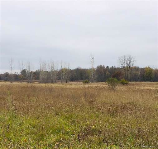 PARCEL A Sherwood Road, Conway Twp, MI 48836 (#219118684) :: GK Real Estate Team