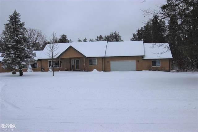 6794 County Road 612, Grayling, MI 49738 (#58050001226) :: Alan Brown Group
