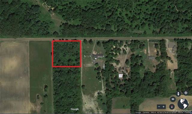 VACANT Arkona Road, Sumpter Twp, MI 48111 (#219120261) :: Team Sanford