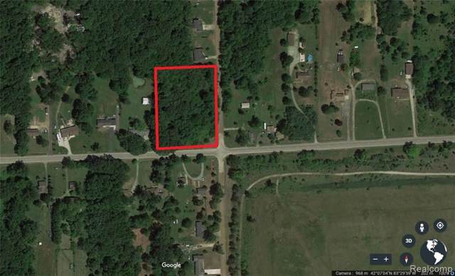 VACANT Elwell Road, Sumpter Twp, MI 48111 (#219120263) :: Team Sanford