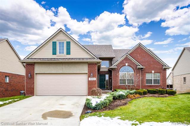 36325 St Andrews Drive, Livonia, MI 48152 (#219120629) :: The Buckley Jolley Real Estate Team