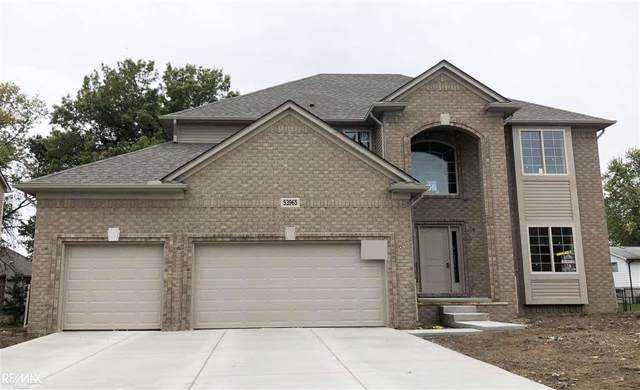 53965 Connor Drive, Chesterfield Twp, MI 48051 (#58050001519) :: The Mulvihill Group