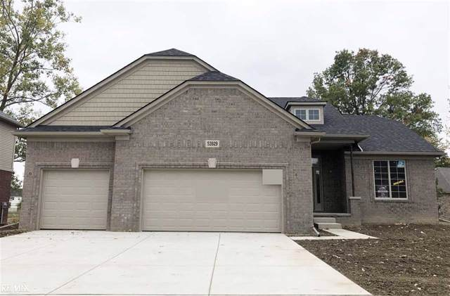53929 Connor Drive, Chesterfield Twp, MI 48051 (#58050001518) :: The Mulvihill Group