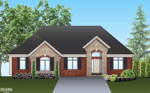 54774 Black Hills Lane, Shelby Twp, MI 48316 (#58050001556) :: Springview Realty