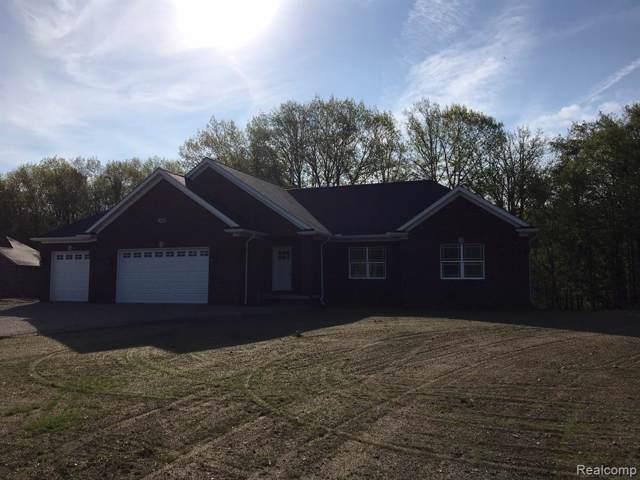 7340 Vanderploeg Lane, Imlay Twp, MI 48444 (#219121371) :: The Buckley Jolley Real Estate Team