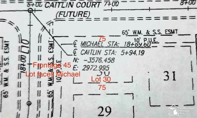 4149 Michael Dr, Bedford Twp, MI 48144 (#57050001580) :: Robert E Smith Realty