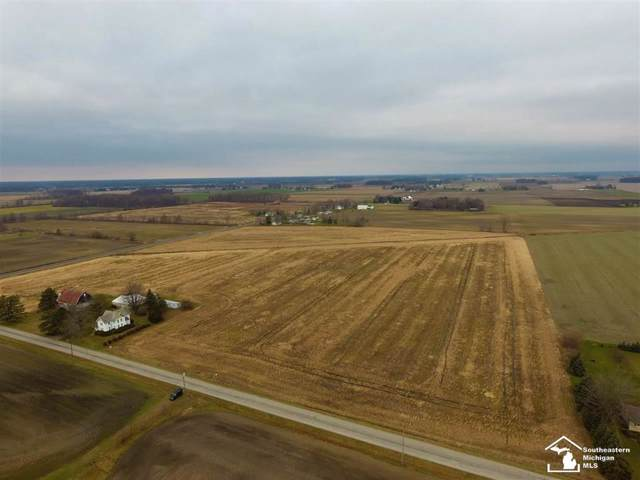 01 Todd, Ida Twp, MI 48182 (MLS #57050001686) :: The John Wentworth Group
