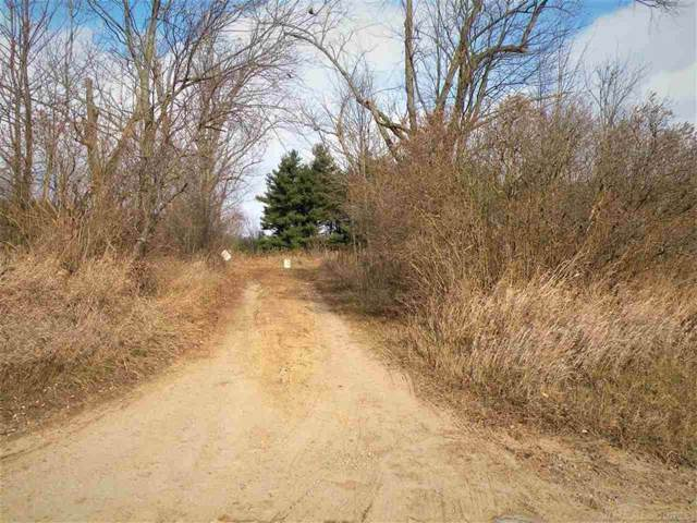 French Line Rd., Applegate, MI 48401 (#58050001738) :: Springview Realty