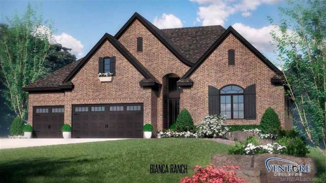 53284 Copse Dr, Shelby Twp, MI 48315 (#58050001764) :: Alan Brown Group
