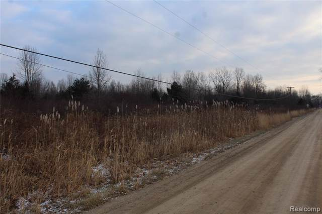 VACANT Arkona Road, Sumpter Twp, MI 48111 (#219122156) :: Team Sanford