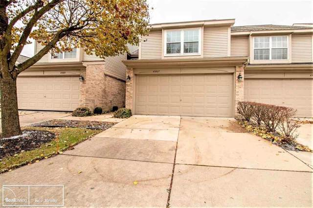 43807 Coachmaker Dr, Sterling Heights, MI 48313 (#58050001792) :: Alan Brown Group