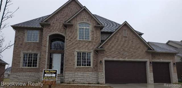 6262 Shadydale Drive, Shelby Twp, MI 48316 (#219122759) :: The Buckley Jolley Real Estate Team