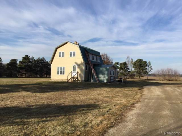 1198 W Filion Road, Meade Twp, MI 48432 (#2200001341) :: The Buckley Jolley Real Estate Team