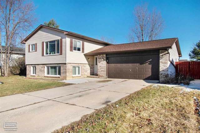 70274 Canterbury, Richmond, MI 48062 (#58050003063) :: Springview Realty