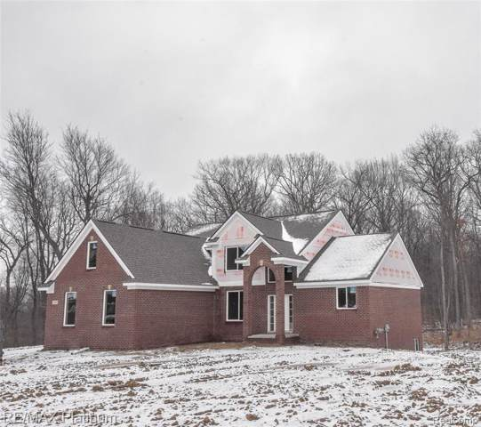 2494 Cristina Anne Court, Hartland Twp, MI 48855 (#2200002842) :: Springview Realty