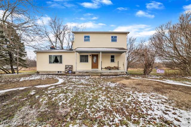 13348 Reed Road, Burns Twp, MI 48418 (#2200003359) :: The Buckley Jolley Real Estate Team