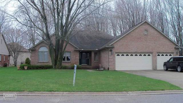 68305 Lake Angela Drive, Richmond, MI 48062 (#58050003428) :: Springview Realty