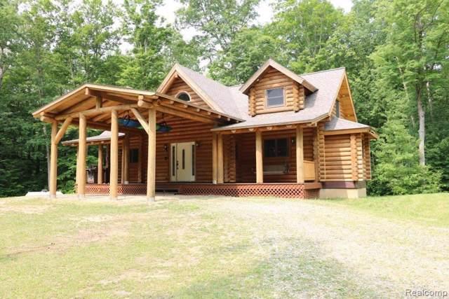 6293 Fish Lake Road, Deerfield Twp, MI 48461 (#2200004289) :: The Alex Nugent Team   Real Estate One