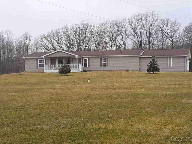 4680 Childs Hwy, Hudson Twp, MI 49247 (#56050003704) :: The Alex Nugent Team | Real Estate One