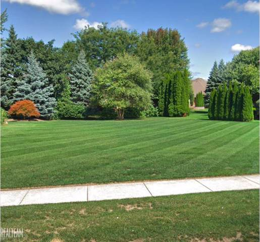 0 Silent Woods, Shelby Twp, MI 48315 (#58050003714) :: The Alex Nugent Team   Real Estate One