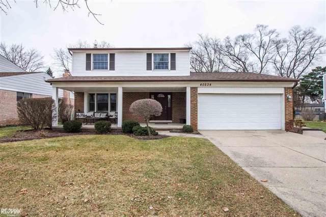 40234 Lizabeth, Sterling Heights, MI 48313 (#58050003795) :: Springview Realty